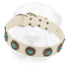 Shar-Pei Elegant Collar Decorated with Blue Stones