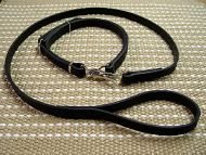 Shar Pei dog leash and collar (combo)