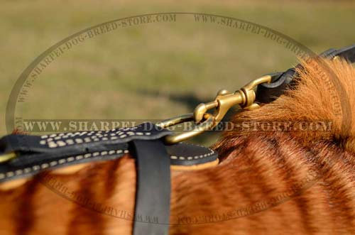 Durable Brass D Ring of Royal Dog Harness