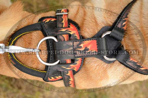 Heavy Duty Leather Harness for Protection Training and Walking