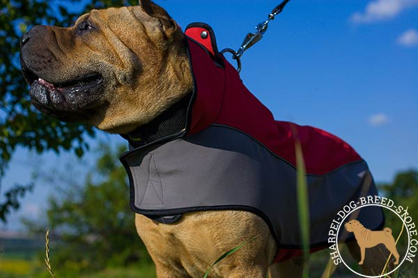 Water-resistant nylon Shar Pei coat harness