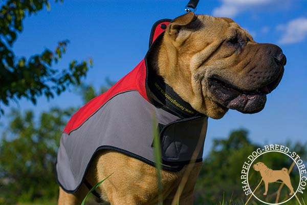 Nylon Shar Pei coat for daily walking