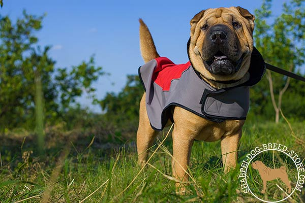 Nylon dog coat for Shar Pei fixed with Velcro