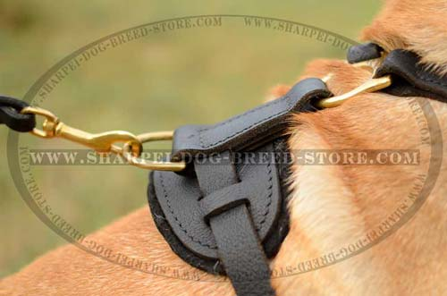 Leather Dog Harness of Refined Shape for Long Service