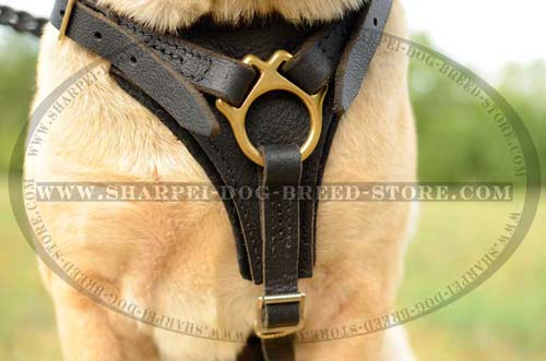Strong and Comfortable Shar Pei Breed Harness for Tracking Work