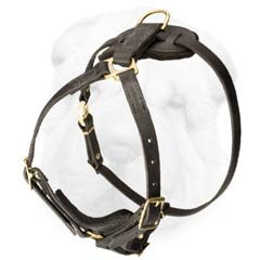 Light Weight Shar Pei Dog Harness for Comfort During Prolonged Tracking or Rescuing Work