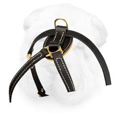 Shar Pei Breed Leather Dog Harness for Puppies