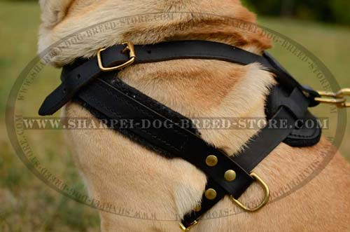 Strong Dog Harness for Pulling and Tracking