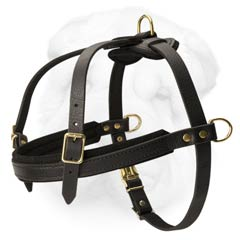 Light Weight Shar Pei Breed Harness Great for Pulling and Tracking