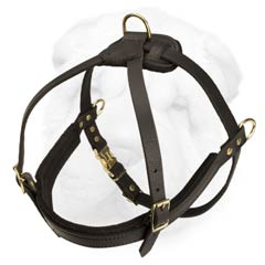 Dog Harness Made of Leather Designed for Pulling and Tracking Work