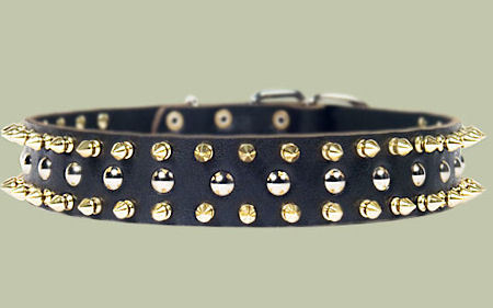 Black Leather Spiked Studded Dog Collar for Sharpei