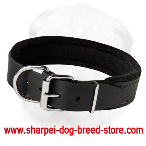 Padded Shar-Pei Collar for Agitation Training and Everyday Walking (Wide)