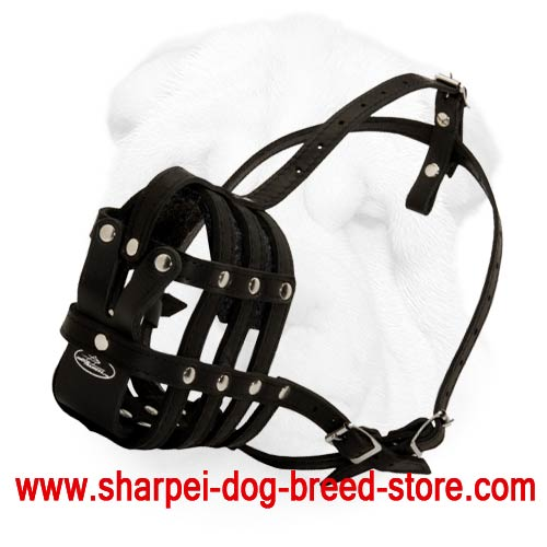 Nappa Padded Leather Muzzle for Shar Pei with Great Level of Ventilation