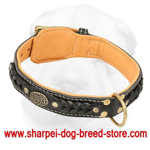 Royal Shar-Pei Collar with Nappa Padding