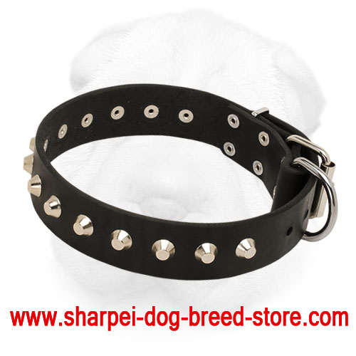 Leather Shar-Pei Collar with Nickel Plated Pyramids