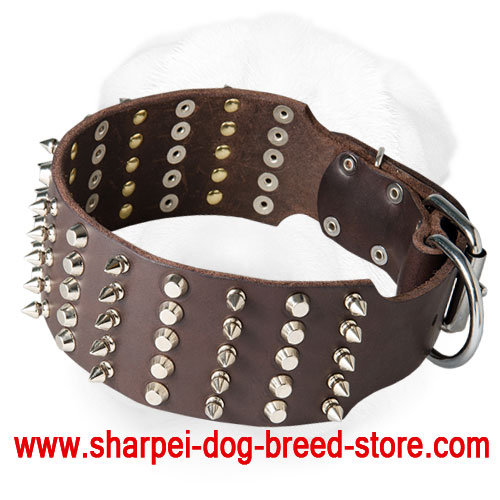 Wide Shar-Pei Collar Decorated with Spikes and Studs