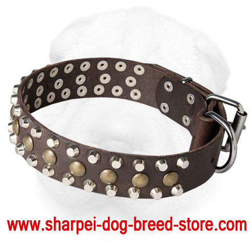 Genuine Leather Shar Pei Collar with Brass and Nickel Studs