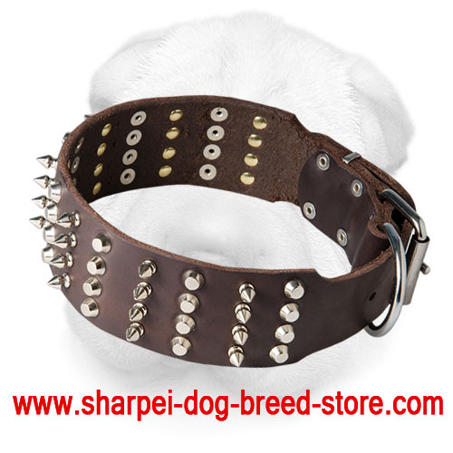 Wide Leather Shar Pei Collar with Spikes and Pyramids