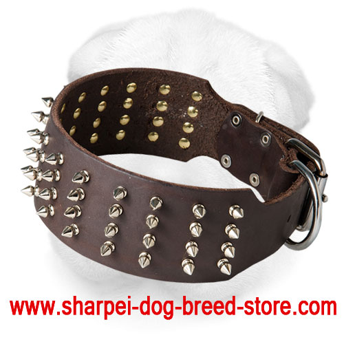 Extra Wide Shar Pei Collar with Glittering Spikes