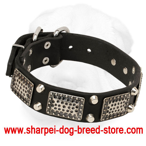 Shar-Pei Collar with Old Nickel Massive Plates and Pyramids