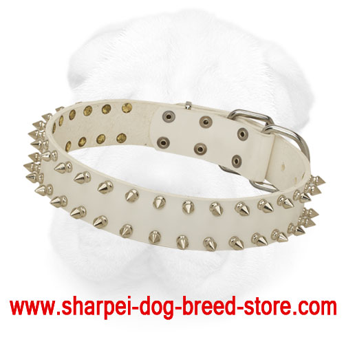 Pearl White Leather Shar Pei Collar with Spikes