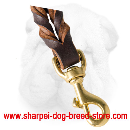 Short Leather Leash for More Control Any Time