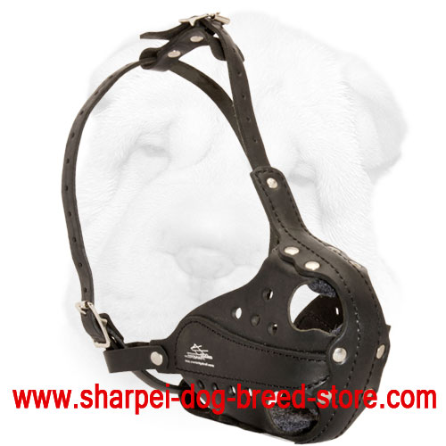 Genuine Leather Shar Pei Everyday Walking Muzzle