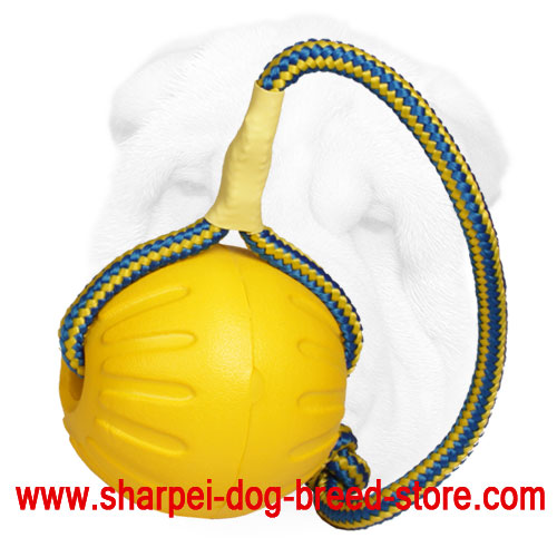 Foam Shar Pei Water Floating Toy Ball - Large