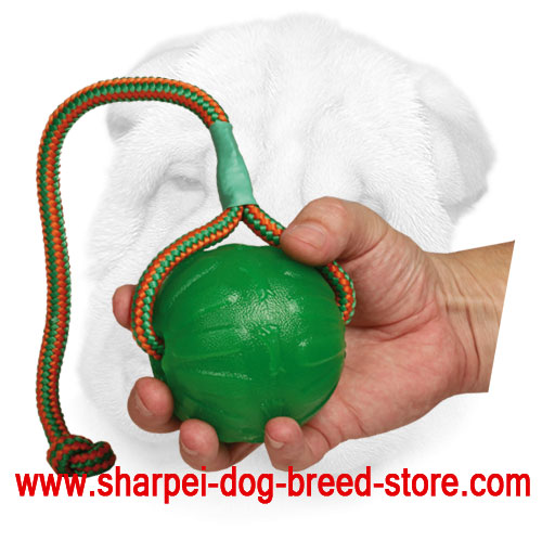 Foam Shar Pei Retrieve Training Ball