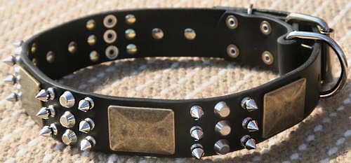 best spiked leather dog collar with studs-peramid and plates for Shar Pei