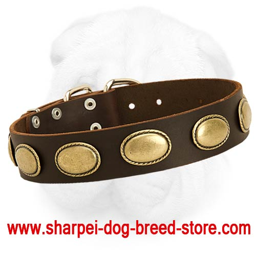Vintage Shar-Pei Collar with Oval Brass Plates