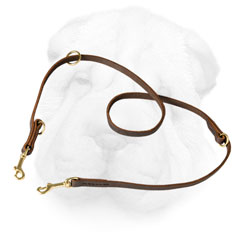 Leather Shar Pei Leash Equipped with Brass Hardware