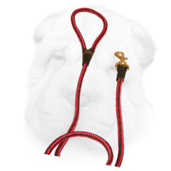 Nylon Shar Pei Leash