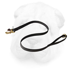 Shar Pei Leash Made of Nylon for Everyday Activities