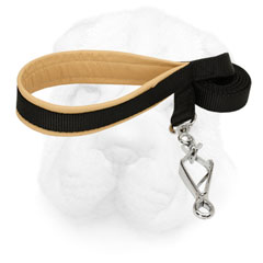 Nylon Leash with Padded Handle for Shar Pei