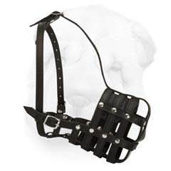 Nappa Padded Leather Muzzle for Shar Pei with Parallel Arrangement of Straps