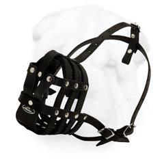 Comfortable Everyday Leather Muzzle for Shar Pei with Soft Nappa Padding