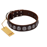 """Charming Circles"" FDT Artisan Brown Leather Sharpei Collar with Silver-like Studs"
