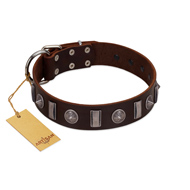 """Spiky Way"" FDT Artisan Brown Leather Sharpei Collar with Silver-Like Decorations"