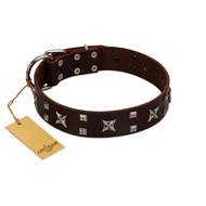"""Bigwig Woof"" FDT Artisan Brown Leather Sharpei Collar with Chrome Plated Stars and Square Studs"