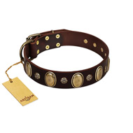 """Bronze Idol"" FDT Artisan Brown Leather Sharpei Collar with Eye-catching Ovals and Small Studs"