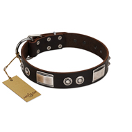 """Baller Status"" FDT Artisan Brown Leather Sharpei Collar Adorned with a Set of Chrome Plated Studs and Plates"