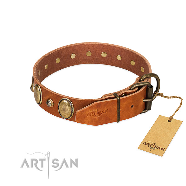 Adorned genuine leather dog collar with durable buckle
