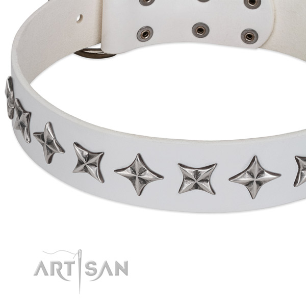 Comfortable wearing embellished dog collar of quality leather