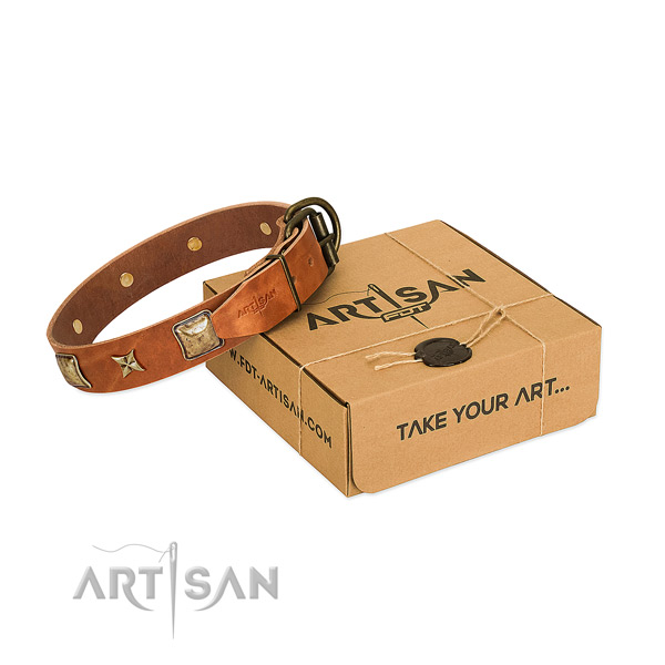 Impressive full grain leather collar for your stylish pet