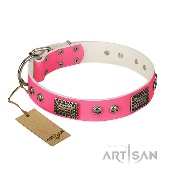 Adjustable full grain leather dog collar for daily walking your doggie