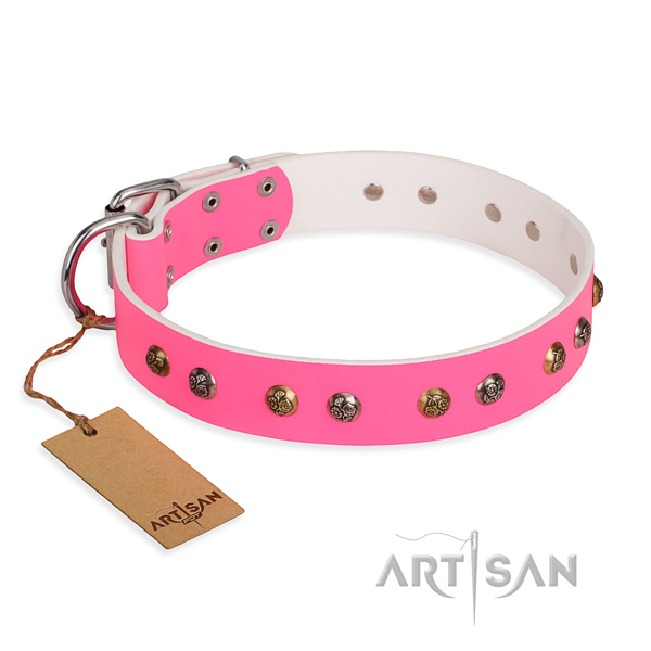 Comfy wearing comfortable dog collar with rust-proof fittings