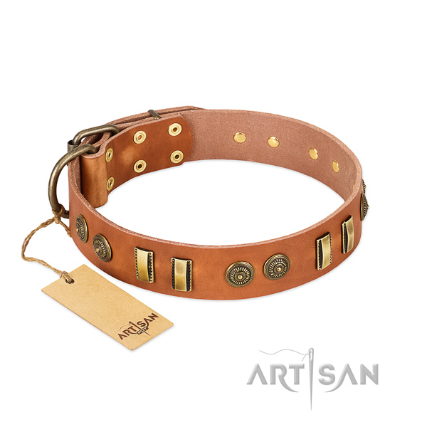 Strong embellishments on full grain genuine leather dog collar for your dog