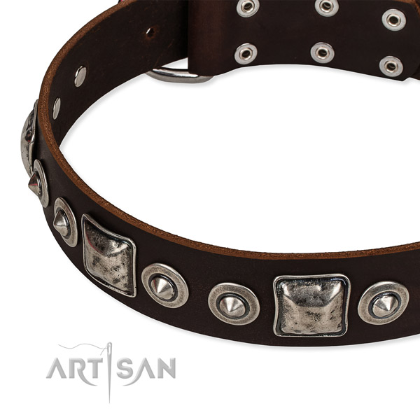 Full grain leather dog collar made of gentle to touch material with embellishments