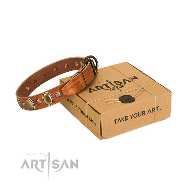 Easy to adjust leather dog collar with rust resistant D-ring